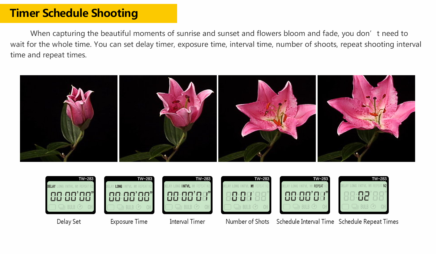 Timer Schedule Shooting